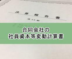 合同会社の「社員資本等変動計算書」